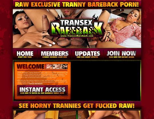in.transexbareback.com