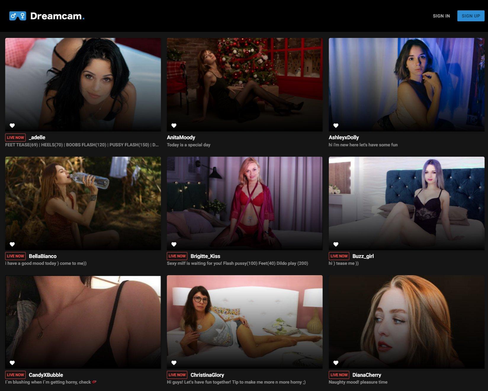 dreamcam.com